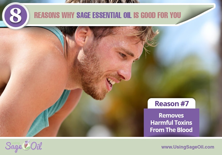 what is sage essential oil used for